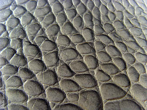 Photo  texture peau de crocodile cuir