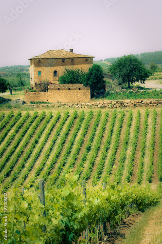 Deurstickers Toscane Typical Tuscan landscape