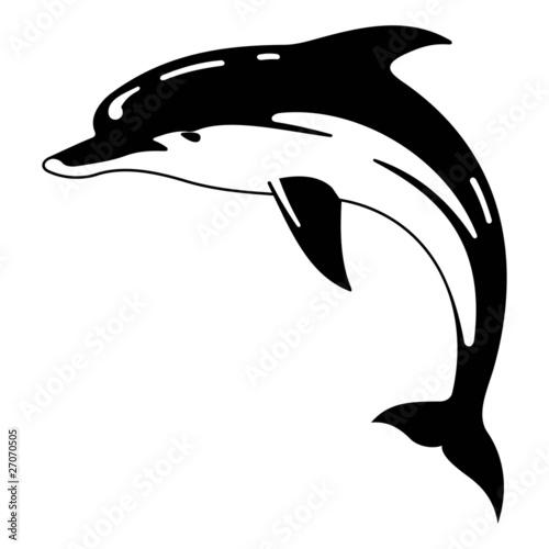 Foto op Plexiglas Dolfijnen dolhin