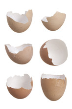 Study Of Six Broken Egg Shells.
