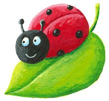 Cute Ladybug On Green Leaf