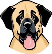 Anatolian Shepherd Dog Cartoon