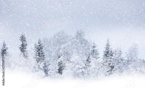 Valokuva Snowing