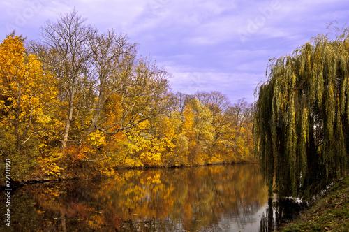 Autumn at the lake #27178991