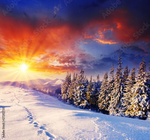 winter - 27282738