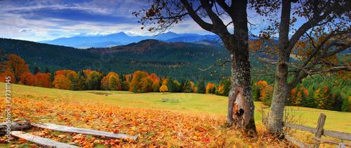 Naklejki nad kuchenny blat jesien-krajobraz
