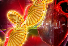 Dna With Heart