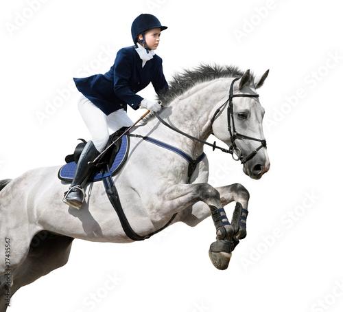 Poster Equitation Equestrian jumper