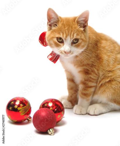 Photographie  Christmas