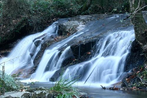 Aluminium Prints Forest river cascada en el montseny (2)
