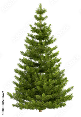 Fotografía  Christmas tree isolated on white background