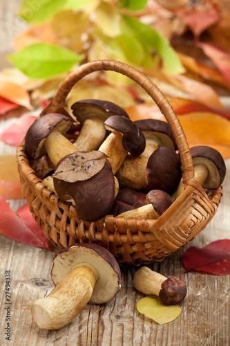 Dekoracja na wymiar drewna-rozrastaja-sie-w-tkanym-koszu-na-drewnianym-stole-w-jesieni