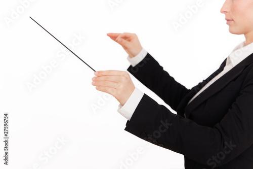 Fotografie, Obraz  dirigent