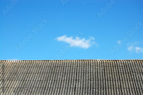 Fototapeta chura nad dachem obraz
