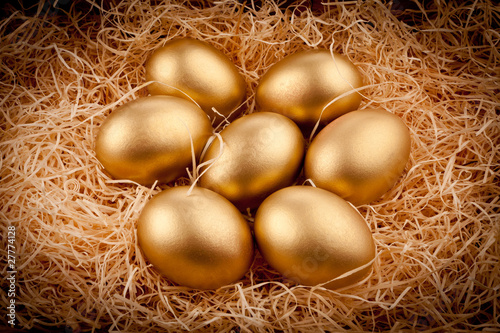 Golden eggs Canvas Print