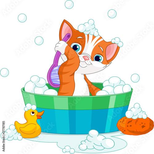 Printed kitchen splashbacks Cats Cat having a bath