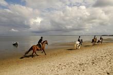 Reiter Am Strand Von Sylt