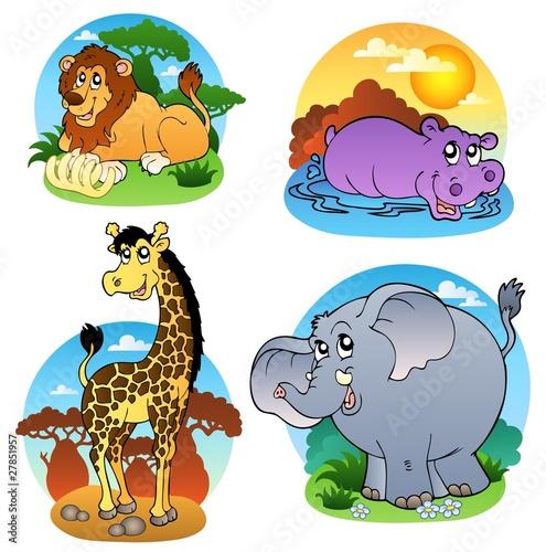 Foto op Aluminium Zoo Various tropical animals 1