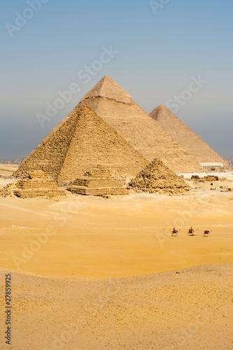 Egypt Camels Line Walk Pyramids All Vertical
