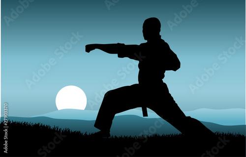 Obraz na plátně kung fu