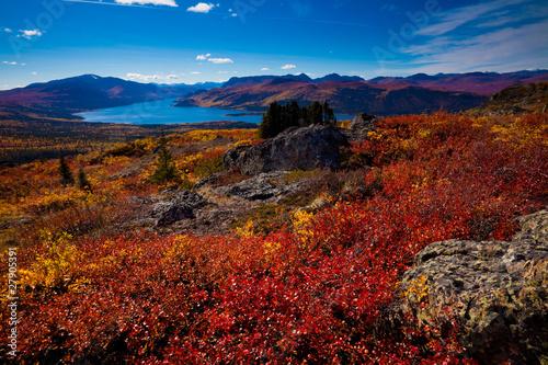 Garden Poster Brown Fish Lake, Yukon Territory, Canada