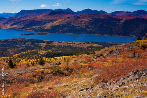 Photo Stands Lavender Fish Lake, Yukon Territory, Canada