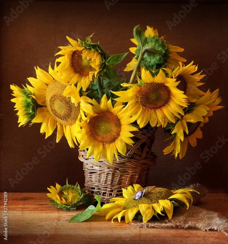 Fototapety, obrazy: sunflover