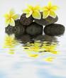 composition florale et minérale