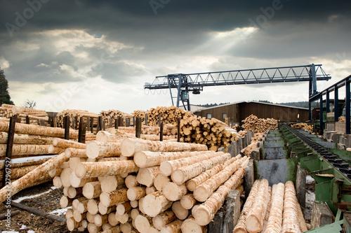 Obraz Sawmill (lumber mill) - fototapety do salonu