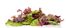 Mixed Green And Red Lettuce Is...