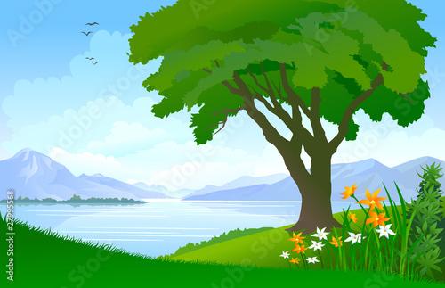 Canvas Prints River, lake Spring Lakeview