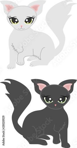 Printed kitchen splashbacks Cats Graue Kätzchen