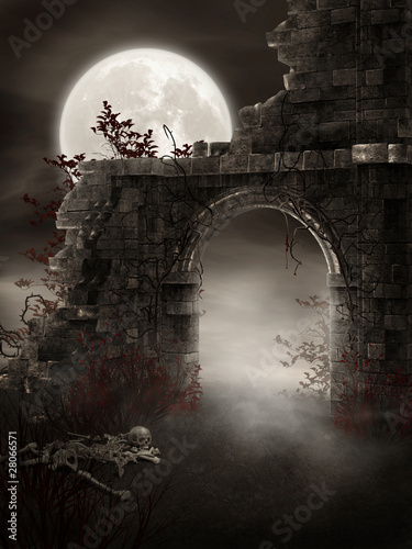 Fotografie, Obraz  Mroczne ruiny ze szkieletem