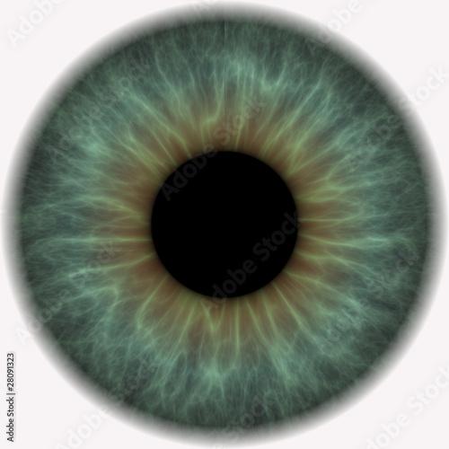 Foto op Aluminium Iris iris of eye