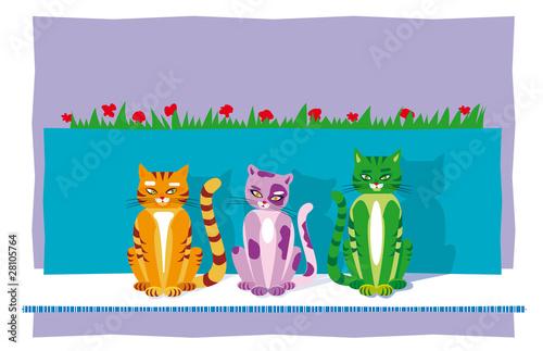 Printed kitchen splashbacks Cats cats