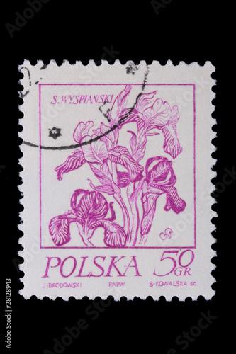 Fotografia  Poland - CIRCA 1968: A stamp - flower