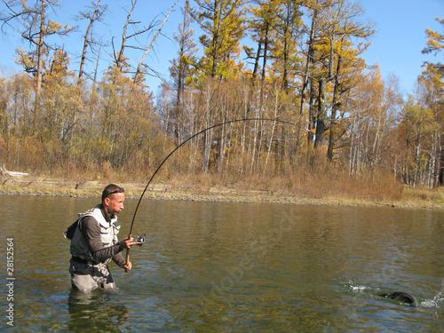 Printed kitchen splashbacks Fishing Fishing