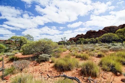 Obraz na plátně Outback Landschaft
