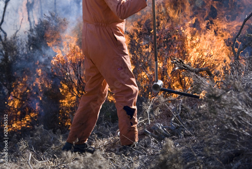 Controlled Burning Canvas