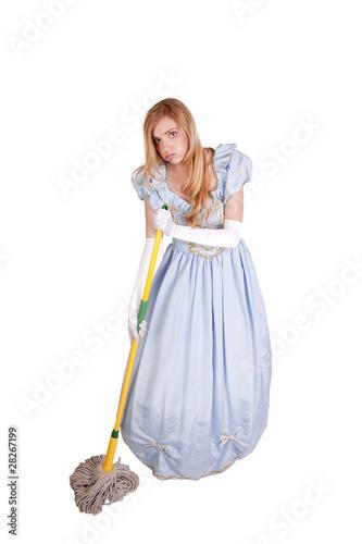 Fotografie, Obraz  Cinderella mop