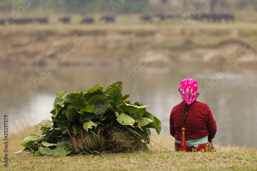 Spoed Foto op Canvas Nepal woman farmer sitting, Chitwan, Nepal