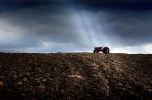 Traktor Rolniczy Na Polu Upraw...