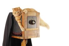 Cat Retro Photographer With Vintage Camera In Studio