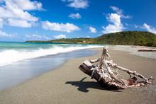 Beautiful Tropical  Beach In B...