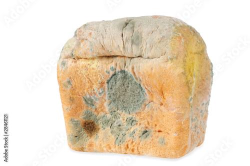 Fotografie, Obraz  Moldy bread. Isolated