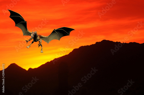 Poster Draken Sunset Dragon