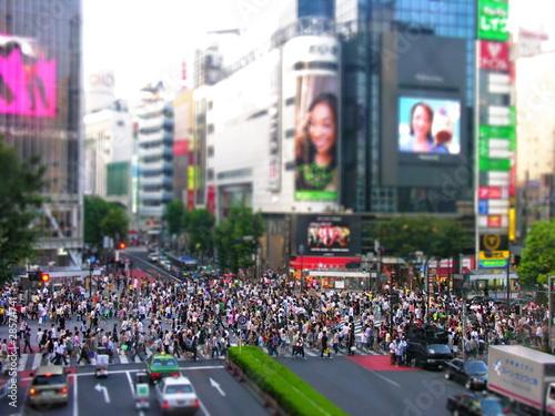 Foto op Aluminium Tokio Tokyo pedestrian crossing