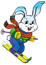 Young Hare Skiing. Vector Art-illustration.
