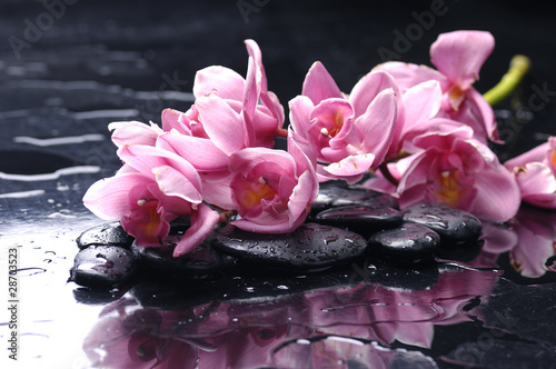 In de dag Spa beauty orchid and stone with water drops
