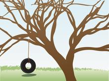 Tire Swings Hangs From Leafless Tree In Grass Field Daytime